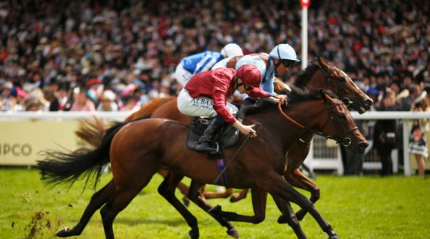 Weekend Indian Horse Racing Tips - August 4th, 2019