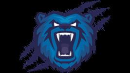 T20 Blast team Birmingham Bears
