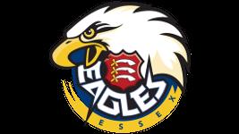 Essex Eagles logo