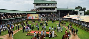 Horse Breeders In India Not Getting Any Sales As Racing Industry Still In Lockdown