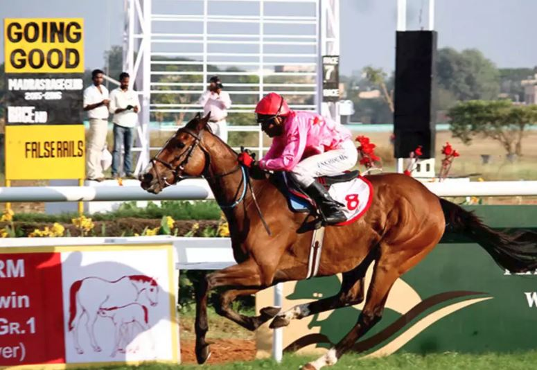 guindy race course betting tips