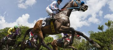 Weekend Indian Horse Racing Tips - April 14th, 2019