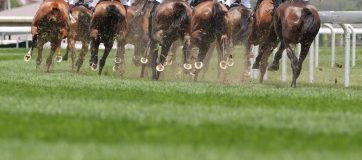 Weekend Indian Horse Racing Tips - July 14th, 2019