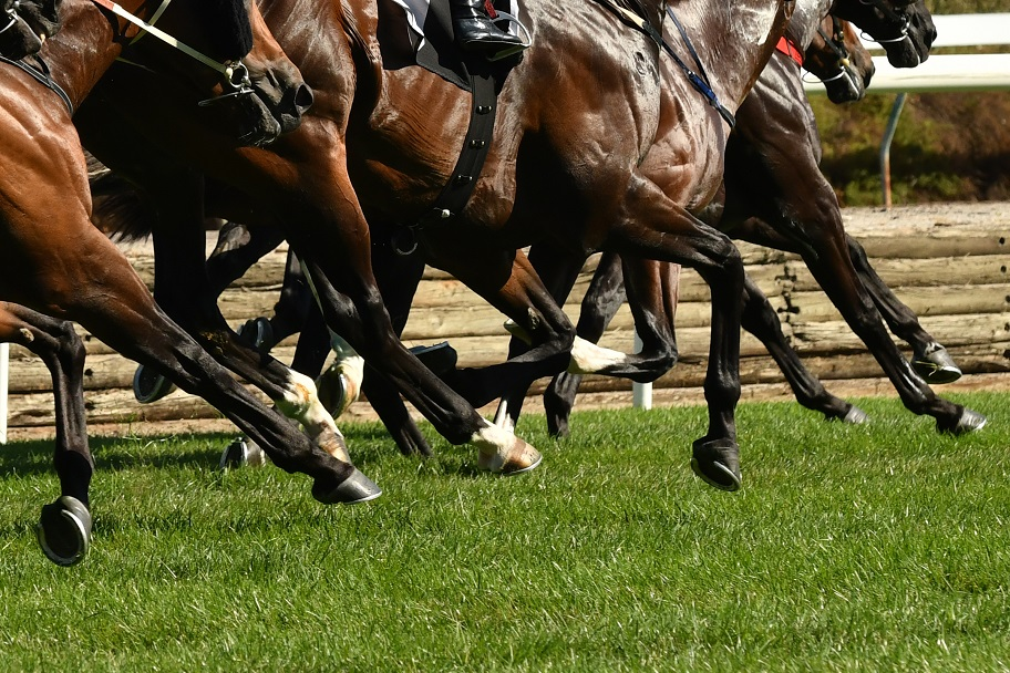Horse race betting in hyderabad secunderabad tab online betting south australia fires