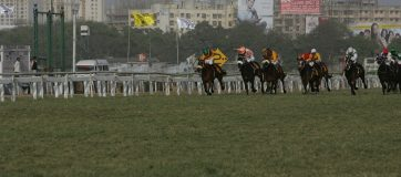 Chennai Set To Resume Curtailed Horse Racing Season From Nov 6
