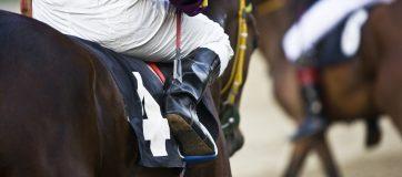 Horse Racing In India Review  - 3 November, 2019