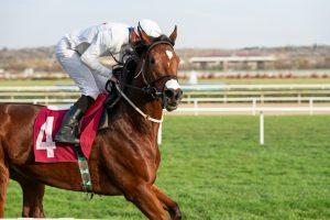 Bengaluru Turf Club Says Ten Jockeys Test Positive For COVID-19