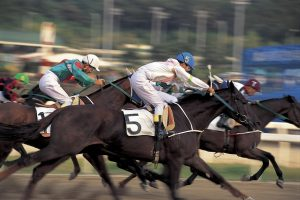 Horse racing in India has resumed on Bangalore Turf Club after 6 months hiatus.