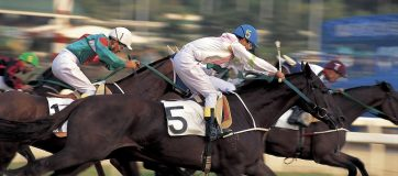 Bangalore Turf Club Results: India Horse Race Results