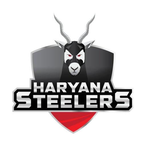 Haryana Steelers logo